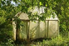 一间小老温室由在绿叶和植被中的玻璃纸磁带制成在庭院里 免版税图库摄影