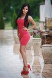 一件性感的桃红色礼服的美丽的女孩 图库摄影