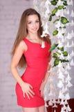 一件性感的红色礼服的美丽的女孩 图库摄影