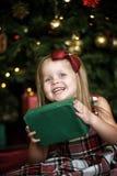 一件方格的礼服的小女孩 库存照片