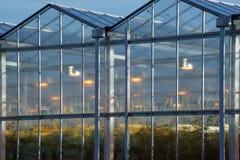 一间温室的外部山墙有growlight设施的 免版税库存照片