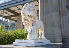 一头狮子的大理石雕塑在沃龙佐夫宫殿 库存图片