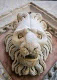 一头狮子的雕塑在锡耶纳,托斯卡纳,意大利洗礼池的  免版税库存照片