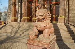 一头狮子的雕塑在围场 库存图片