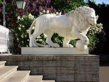 一头狮子的雕象反对淡紫色灌木背景的  图库摄影