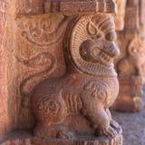 一头狮子,亨比的雕塑在寺庙柱子的 库存图片