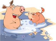 一头猪和一只猫的例证在水坑 库存图片