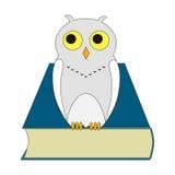 一头猫头鹰的例证与书的 免版税库存照片