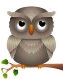 一头猫头鹰的动画片在分支的 免版税库存图片