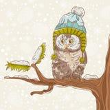 一头猫头鹰的圣诞卡在帽子的 免版税库存图片