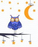 一头猫头鹰的样品在一棵树的与月亮和星 免版税库存照片
