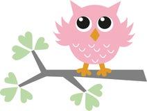 一头甜矮小的桃红色猫头鹰 免版税库存图片