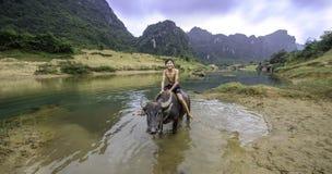 男孩骑马水牛在越南 免版税图库摄影