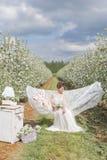 一件轻的白色礼服的美丽的性感的逗人喜爱的女孩在苹果开花的庭院在有书的吊床看见 免版税库存照片