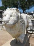 一头石狮子的雕象 免版税库存图片