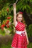 一件礼服的女孩在樱桃庭院里 库存图片