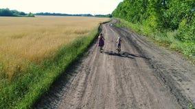 一件礼服的女孩有骑沿麦田的孩子的一辆自行车 与寄生虫的射击 从a的美好的风景 股票视频