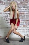 一件红色礼服的俏丽的妇女 库存图片