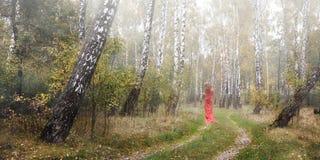 一件红色礼服的女孩在桦树树丛里 免版税库存照片