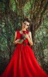 一件红色礼服的美丽的妇女有一朵玫瑰的在手中在背景 免版税库存照片