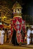 一头美妙地穿戴的礼仪大象通过Kataragama节日游行在斯里兰卡 免版税库存图片