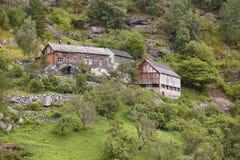 一绿色森林小山landsc的传统挪威木房子 库存图片