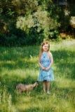 一件蓝色礼服有一个蓝色袋子的和猫的小女孩在夏天ga 免版税图库摄影