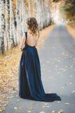 一件蓝色礼服的夫人在森林里 免版税库存图片