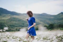 一件蓝色礼服的年轻美丽的妇女享受在山中的春黄菊领域 库存照片