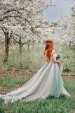 一件豪华礼服的少妇在一个开花的庭院里站立 库存照片