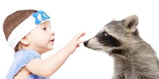 一头逗人喜爱的小女孩和浣熊的画象 图库摄影
