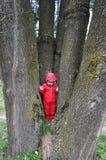 一件雨衣的小女孩在树干之间 免版税库存图片
