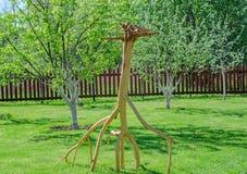 一头鹿的图从树的根源 免版税库存图片