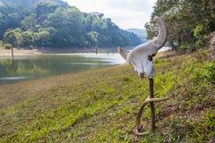 一gaur的头骨与鹿鹿角的在海滩 库存图片