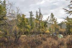 一taiga的露营地在秋天风景 库存图片