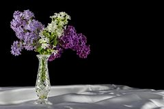 丁香和花瓶 免版税库存图片