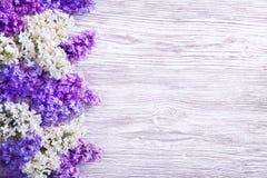 丁香开花在木板条背景,紫色木头的花束 免版税库存图片
