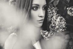 丁香花围拢的美丽的少妇  库存图片