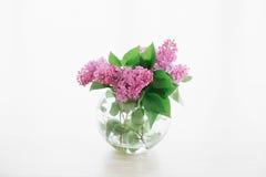 丁香花束在圆的透明花瓶的在窗口附近 免版税库存图片