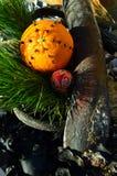 丁香香料在7月钉牢圣诞节在海草和漂流木头圣诞节的装饰的orang果子 免版税库存照片