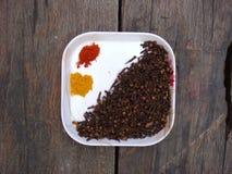 丁香,红色辣椒,在板材的姜黄 免版税图库摄影