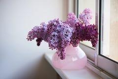 丁香紫色分支在桃红色花瓶的 一朵精美和美丽的花 免版税库存图片