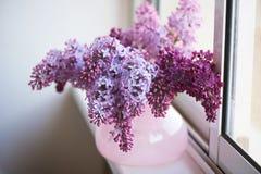 丁香紫色分支在桃红色花瓶的 一朵精美和美丽的花 免版税库存照片