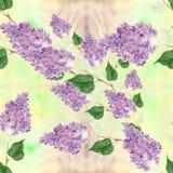 丁香-花和叶子 无缝的模式 与花卉主题的抽象墙纸 墙纸 免版税库存图片