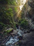 七个台阶峡谷Canionul Sapte Scari,皮亚特拉母马山,蒂米什河de乔斯,布拉索夫,特兰西瓦尼亚,罗马尼亚 免版税图库摄影