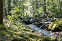 七个木盆瀑布岩石森林小河 免版税图库摄影