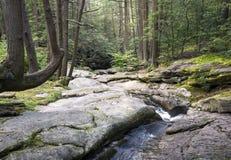 七个木盆瀑布岩石森林小河 库存图片