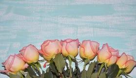 七朵桃红色玫瑰 免版税图库摄影