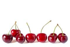 七棵樱桃 免版税库存图片