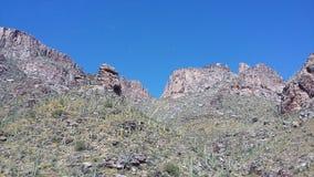 七秋天,圣卡塔利娜山,亚利桑那 图库摄影